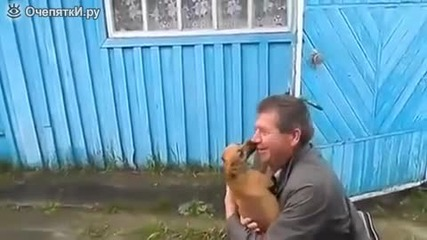 Кученца се радват на завърналия си стопанин