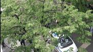 """""""Само Локо"""" пред хотела на Лудогорец, полицията започна проверки след хвърлена бомбичка"""