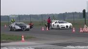 Битка на титаните - Bugatti Veyron vs Bugatti Veyron !