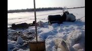 Необикновен руски риболов с клещи ! Смях!