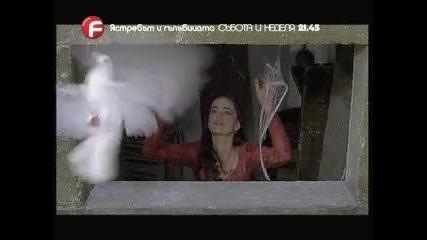 Ястребът и гълъбицата (il Falco e la Colomba )-реклама