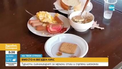 Мръсни стаи, счупени шезлонги и кренвирши за закуска в 4-звезден хотел