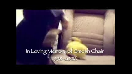 Goodbye Smosh Chair