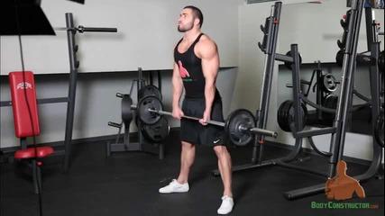 Лазар Ангелов - сумо мъртва тяга - Лумбарни мускули,квадрицепс, Вътрешно бедро