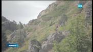 250 км успя да измине Дизела за два дни