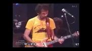 Saban Bajramovic live 2008