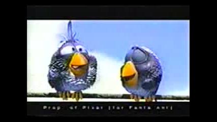 за птиците [176x144 H263]