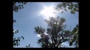 Nicholas Gunn - Beatiful Nature