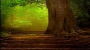 Tarja Turunen - Ave Maria - Mother Earth