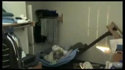 Ето това е нинджа ! Буквално пръсна кревата..