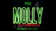 Нова лудница! Tyga & Wiz Khalifa - Molly