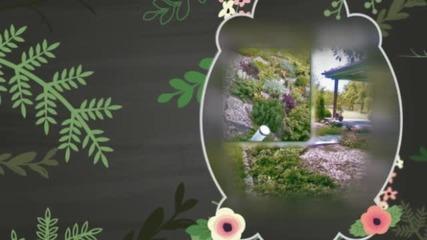 Вега Ланд Еоод – озеленяване