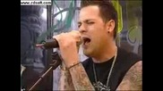 Good Charlotte - The River (On Trl)