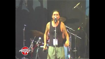 Kozza Mostra - Мастика - Spirit of Burgas
