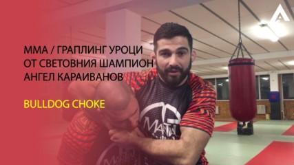MMA ЗА НАЧИНАЕЩИ: Bulldog Choke