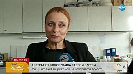 Български учени търсят лек за рака