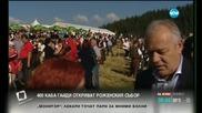 Откриват Роженския събор в Родопите (2 Част)