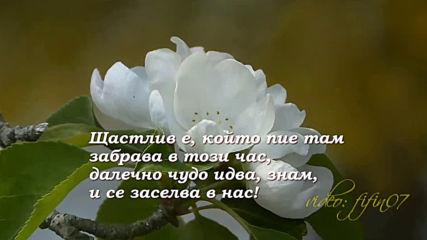 Пролет, пролет......- Е. Баратински / Tim Janis Hd