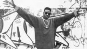 Schoolly D- Psk What Does It Mean
