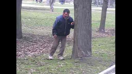 Дръж Дървото Ще Паднеш!!!