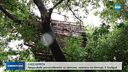 СЛЕД БУРЯТА: Продължава разчистването на щетите, нанесени от вятъра, в Пловдив
