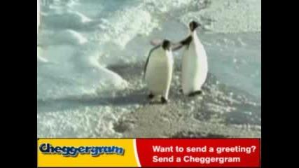 Лошия пингвин