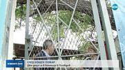 Две деца в болница след голям пожар в Пловдив