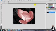 Как да оцветим черно - белите снимки с Photoshop Cs4