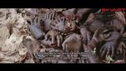 Сбогом, Африка (1966) - бг субтитри Част 2 - Документален филм