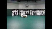 Основи На Gracie Jiu Jitsu