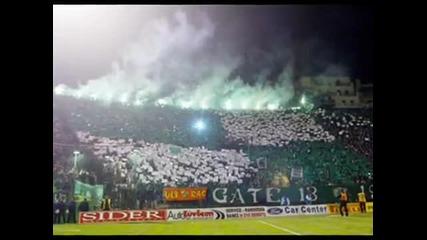 Best Fans on Balkan ! ! !