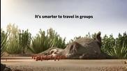 Никога не пътувай сам:)