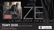 Tony Dize ft. Jose Cosculluela - A Punto de Cazar ( Official Audio )
