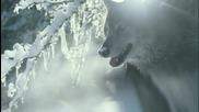 * Това ни е в природата [пълна версия] New Shangri-la Tv Ad - It's in our nature 3min (english).mov