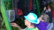 Най-модерната машина за бране на ягоди