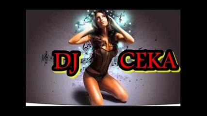 Dj Ceka - House Mix ''2013''
