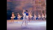 Swan Lake - Grand Adagio (Plisetskaya - Kovtun, Bolshoi 1973)