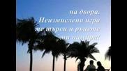 Петя Дубарова - Доброта