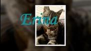 Ерина ( Erina Video for Germany )