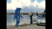 Акулата Remi Gaillard