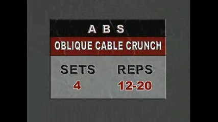 Abs - Muscle and Fitness