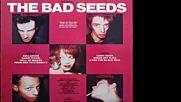 Nick Cave The Bad Seeds 1984-lp-album