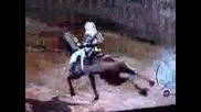 Assassins Creed - Бъг с конят
