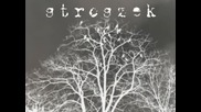 Stroszek - Can't make things undone