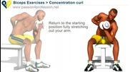 Бицепс Упражнения - правилното изпълнение на упражнението