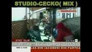 Ionut Cercel I Cecko (mix)