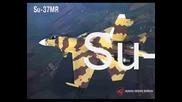 Su - 37 The Terminator
