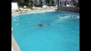 Мите показва кресненски скок на басейна,  Messonghi Beach Hotel Corfu