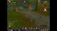 World Of Warcraft Правене На Дуели