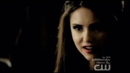 Katherine .. I cant be tamed ! - h -